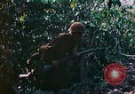Image of 2nd Marine Division Saipan Northern Mariana Islands, 1944, second 9 stock footage video 65675077875