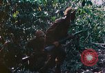 Image of 2nd Marine Division Saipan Northern Mariana Islands, 1944, second 10 stock footage video 65675077875