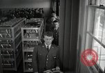 Image of aviation cadets in dining hall San Antonio Texas USA, 1950, second 6 stock footage video 65675077921
