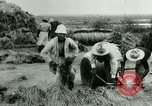 Image of rice cultivation Philippines, 1915, second 2 stock footage video 65675078023