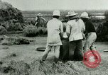 Image of rice cultivation Philippines, 1915, second 5 stock footage video 65675078023