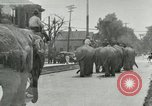 Image of circus United States USA, 1919, second 1 stock footage video 65675078134