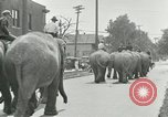 Image of circus United States USA, 1919, second 2 stock footage video 65675078134