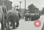Image of circus United States USA, 1919, second 3 stock footage video 65675078134
