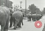 Image of circus United States USA, 1919, second 4 stock footage video 65675078134