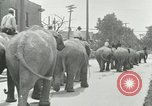 Image of circus United States USA, 1919, second 5 stock footage video 65675078134