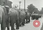 Image of circus United States USA, 1919, second 8 stock footage video 65675078134