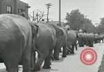 Image of circus United States USA, 1919, second 9 stock footage video 65675078134