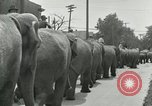 Image of circus United States USA, 1919, second 10 stock footage video 65675078134
