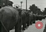 Image of circus United States USA, 1919, second 11 stock footage video 65675078134