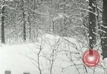 Image of snow forest Detroit Michigan USA, 1919, second 5 stock footage video 65675078142