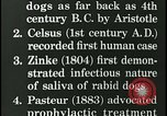Image of Rabies in human brain United States USA, 1927, second 8 stock footage video 65675078239